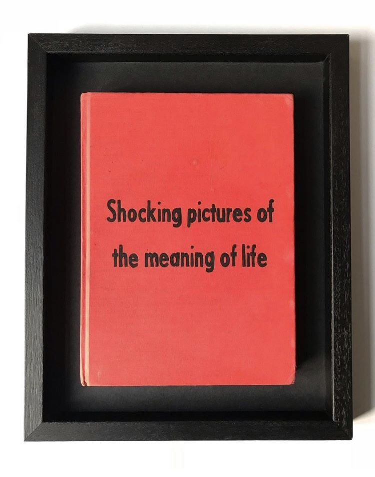 Shocking Pictures